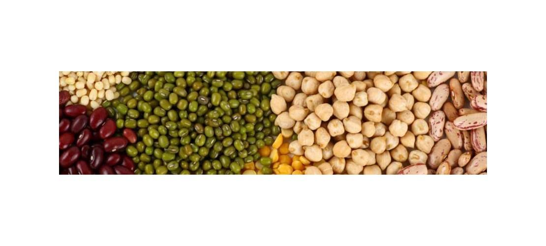 Legumbres: lentejas, judias, garbanzos, arroz para paellas, arroz para guarniciones, arroz integral